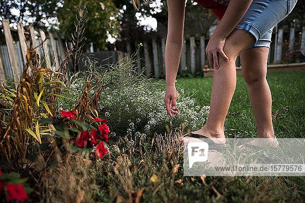 Mädchen greift im Garten nach der Blume
