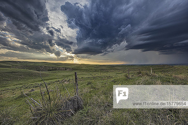 Thunderstorm forms at sunset over rural Ogallala  Nebraska  US