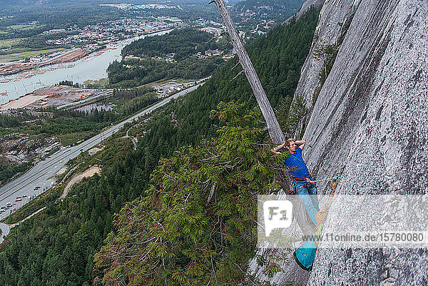 Climber sleeping leaning back on a tree growing out of the cliff face  traditional climbing  Sea to Sky corridor  Squamish