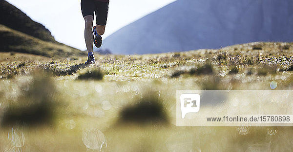 Trailrunning in den Bergen  niedriger Abschnitt