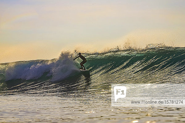 Surfer in the evening  Bali  Indonesia