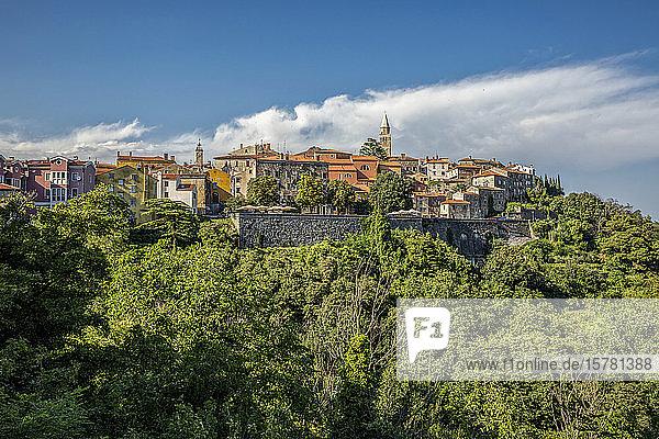 Kroatien  Istrien  Labin  Blick auf die Stadt auf dem grünen Hügel