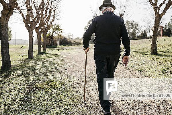 Alter Mann  der im Winterpark spazieren geht und sich auf seine Akne stützt