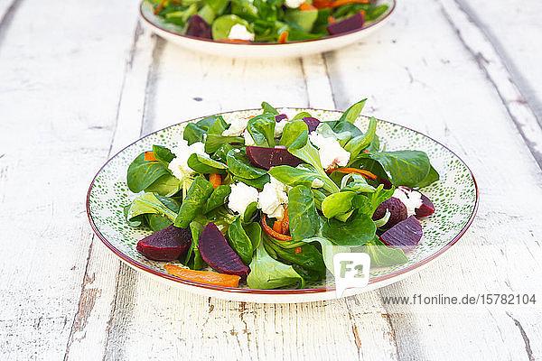 Teller Maissalat mit gebratenen Karotten  roten Rüben  roten Zwiebeln und Ziegenfrischkäse