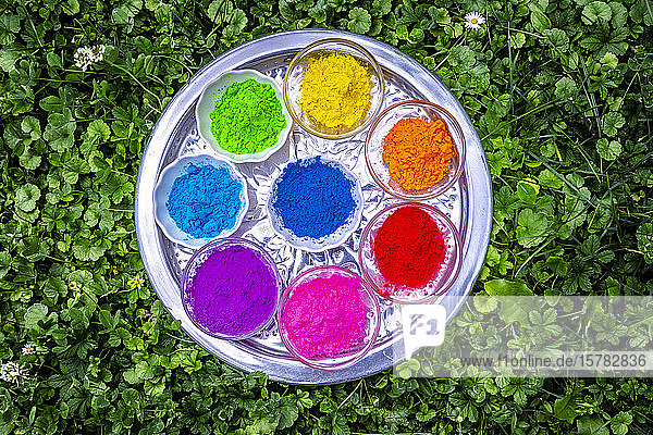 Powder paints in bowls on tray for celebrating Festival of Colours