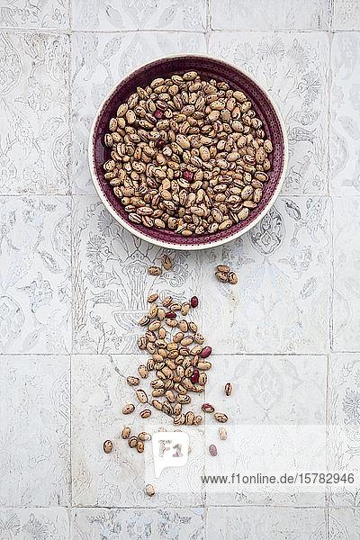 Schale mit getrockneten Schecken- und Borlotto-Bohnen  die auf einer gefliesten Oberfläche liegen
