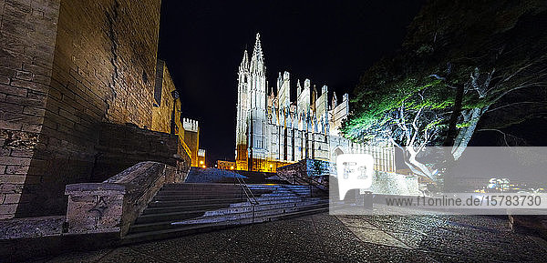 Spain  Balearic Islands  Palma de Mallorca  Cathedral of Santa Maria of Palma illuminated at night