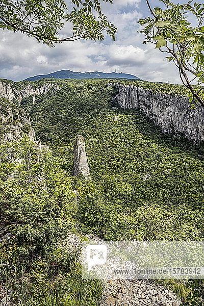 Kalksäulen in der Vela-Dragaschlucht  Naturpark Ucka  Istrien  Kroatien