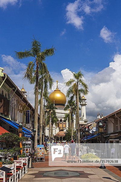 Masjid Sultan mosque and shops on Arab Street in the Malay Heritage District  Singapore  Republic of Singapore.