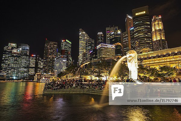 Merlion fountain and business district at night  Singapore  Republic of Singapore.