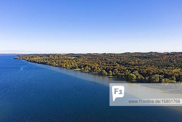 Herbststimmung am Starnberger See bei Ambach  Ostufer  Luftbild  Fünfseenland  Oberbayern  Bayern  Deutschland  Europa