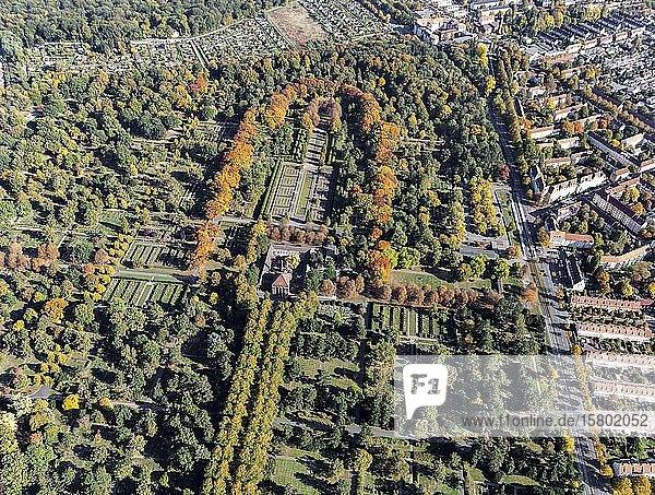 Stadtfriedhof Seelhorst  zentrale Lindenallee im Herbst  Hannover  Niedersachsen  Deutschland  Europa