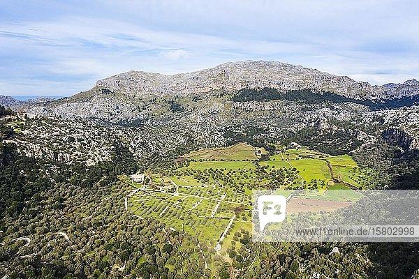 Clot d'Albarca  Serra de Tramuntana  Drohnenaufnahme  Mallorca  Balearen  Spanien  Europa