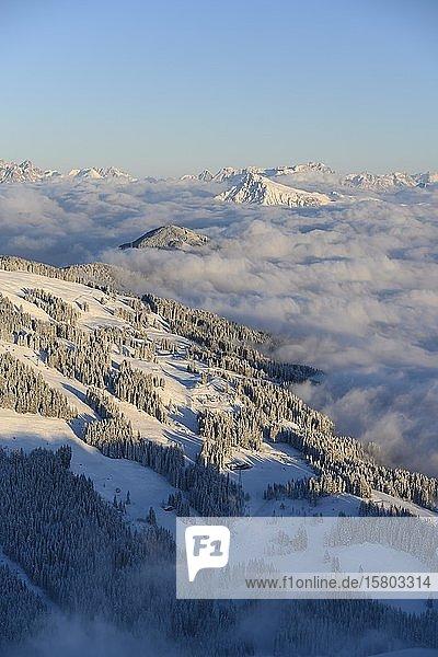 Blick von der Hohen Salve mit Kitzbühler Horn  Bergpanorama im Winter  Berggipfel ragen über Wolkendecke  Skigebiet SkiWelt Wilder Kaiser Brixental  Brixen im Thale  Tirol  Österreich  Europa