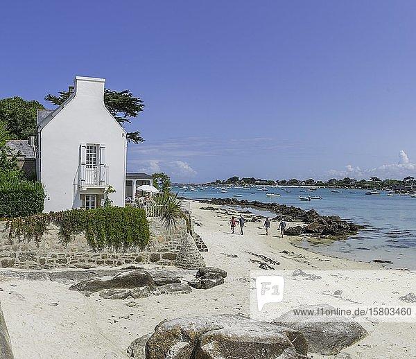 Bucht von Brignogan-Plages  Kerlouan  Département Finistère  Frankreich  Europa