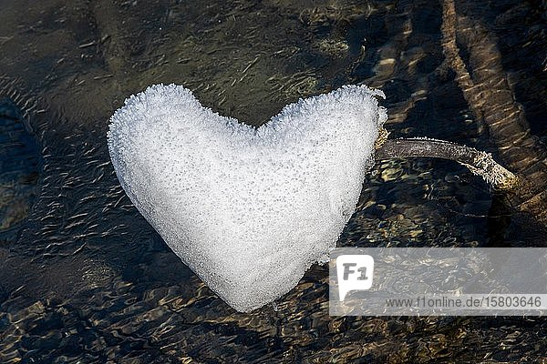 Herzförmiges Eis über Wasser  Panorama  Plitvice  Kroatien  Europa