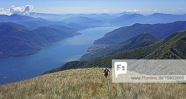 Hikers in meadow during the descent  view from Monte Gridone to the south on Lago Maggiore  Brisagio  Lago Maggiore  Ticino  Switzerland  Europe