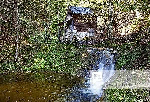 Old water mill on the mill hiking trail near Ebenau  Province of Salzburg  Austria  Europe