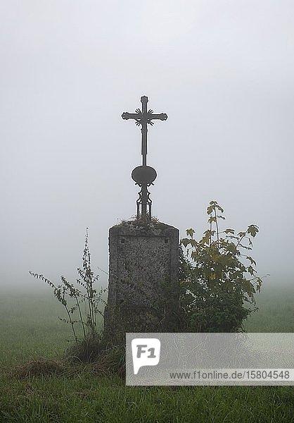 Wegkreuz im Nebel  Bichl  Oberbayern  Bayern  Deutschland  Europa