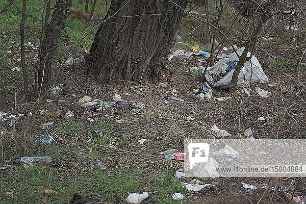Symbolbild Umweltverschmutzung  Plastikmüll am Straßenrand  Oblast Cherson  Ukraine  Europa