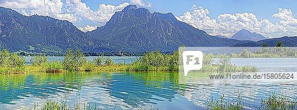 Badestrand am Forggensee mit Ammergauer Alpen  Osterreinen  Füssen  Bayern  Deutschland  Europa