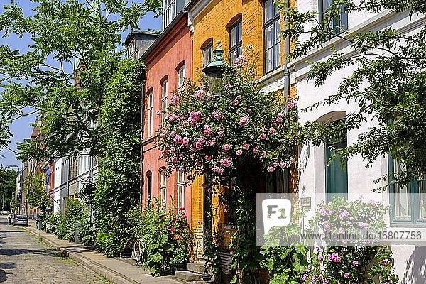 Historische Arbeitersiedlung Nyboder  Kopenhagen  Dänemark  Europa