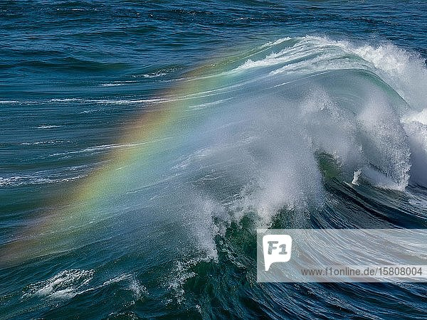 Welle mit Regenbogen in der Gischt  Fuerteventura  Kanaren  Spanien  Europa