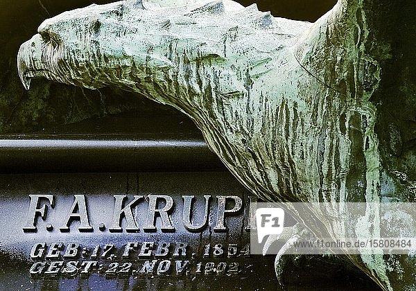 Detail der Grabstätte von Friedrich Alfred Krupp mit Adler Skulptur  städtischer Friedhof Bredeney  Essen  Ruhrgebiet  Nordrhein-Westfalen  Deutschland  Europa