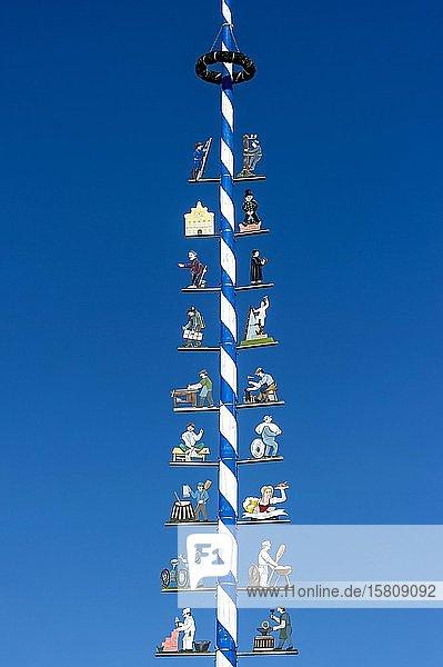 Maibaum mit Zunftzeichen  Marktplatz  Dorfen  Oberbayern  Bayern  Deutschland  Europa