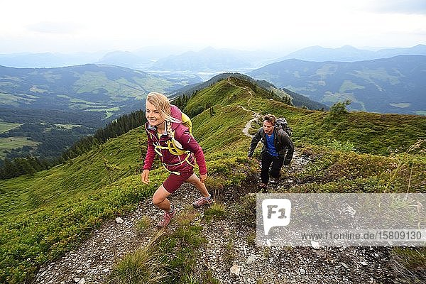 Wanderer beim Aufstieg auf das Feldalphorn  Kelchsau  Kitzbüheler Alpen  Tirol  Österreich  Europa