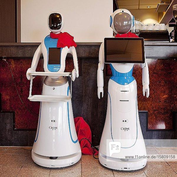 Zwei Catering Service-Roboter in einem chinesischen Restaurant  Deutschland  Europa
