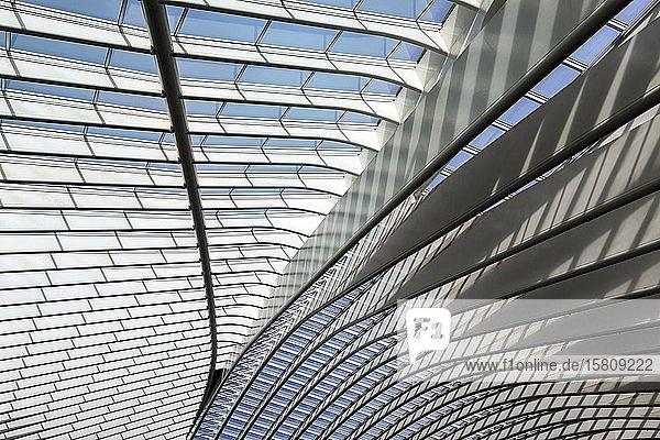 Dachdetail im Bahnhof von Lüttich  Gare de Liège-Guillemins  entworfen vom spanischen Architekten Santiago Calatrava  Lüttich  Wallonische Region  Belgien  Europa