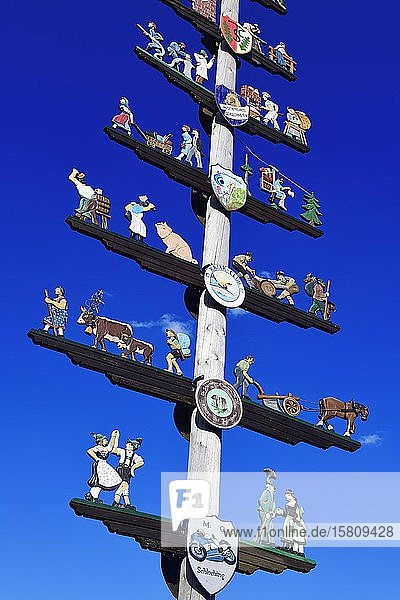 Maypole with guild sign in Schleching  Chiemgau  Upper Bavaria  Bavaria  Germany  Europe