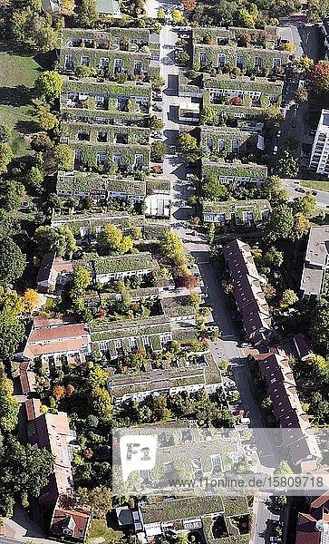 Grasdachsiedlung Laher Wiesen  ökologisches Gruppenbauprojekt  Bothfeld  Hannover  Niedersachsen  Deutschland  Europa