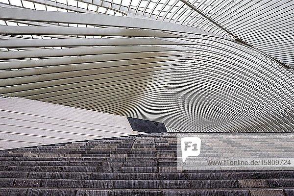 Bahnhof von Lüttich  Gare de Liège-Guillemins  entworfen vom spanischen Architekten Santiago Calatrava  Lüttich  Wallonische Region  Belgien  Europa