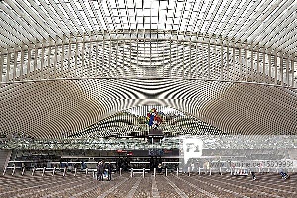 Außenansicht des Bahnhofs von Lüttich  Gare de Liège-Guillemins  entworfen vom spanischen Architekten Santiago Calatrava  Lüttich  Wallonische Region  Belgien  Europa