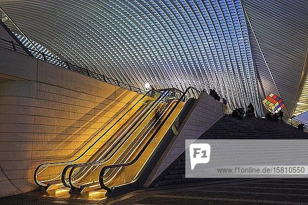 Bahnhof von Lüttich  Gare de Liège-Guillemins  entworfen vom spanischen Architekten Santiago Calatrava  Nachtaufnahme  Lüttich  Wallonische Region  Belgien  Europa