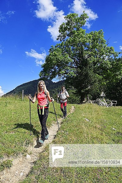 Hikers at the Chiemhauser Alm  Schleching  Chiemgau  Upper Bavaria  Bavaria  Germany  Europe