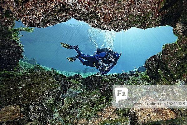 Taucher mit Unterwasserkamera betrachtet Höhle mit Süßwasserquelle  Rainbow River  Rainbow Springs State Park  Dunnelon  Florida  USA  Nordamerika