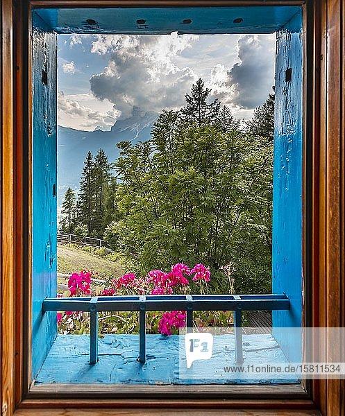 Blick aus einem Fenster mit Geranien  Hütte in den Bergen  Rifugio San Marco  San Vito di Cadore  Belluno  Italien  Europa