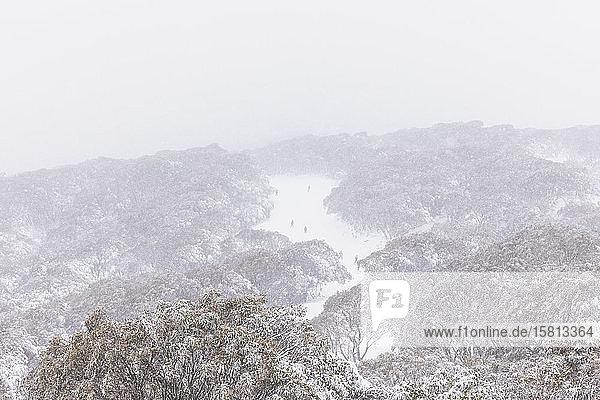 Aussicht auf Skifahrer auf einer verschneiten Bergpiste  Falls Creek  Victoria  Australien