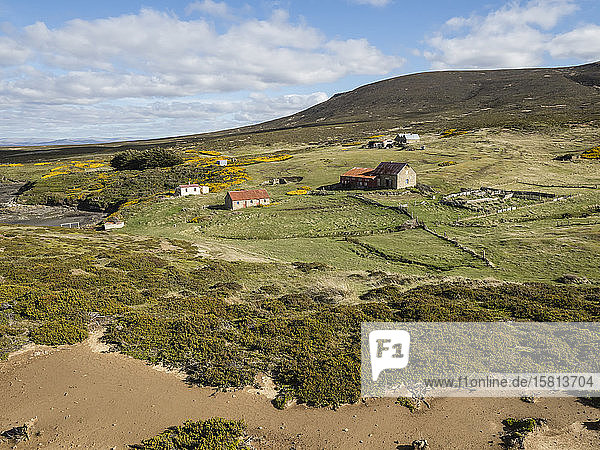 View of the sheep settlement abandoned in 1992 on Keppel Island  Falkland Islands  South America
