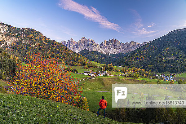 Rear view of man admiring the Odle peaks and little village of Santa Magdalena in autumn  Funes  Dolomites  South Tyrol  Italy  Europe