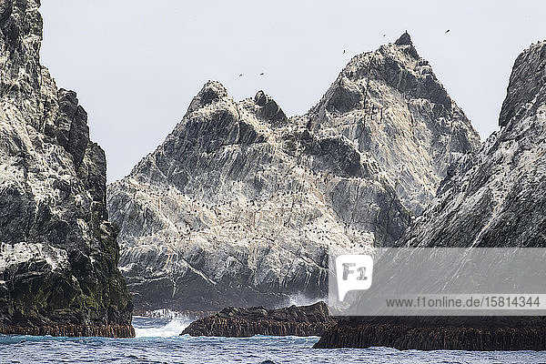 The remote islets known as Shag Rocks  South Georgia  UK Overseas Protectorate  Polar Regions