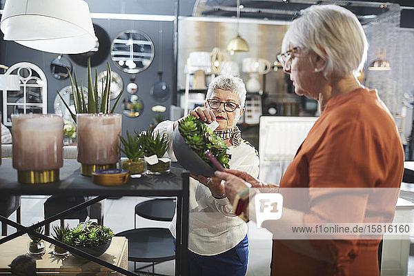Ältere Frauen beim Einkaufen in einem Geschäft für Wohnkultur