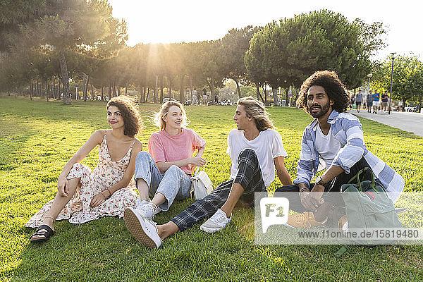 Gruppe von Freunden entspannt sich auf einer Wiese im Park