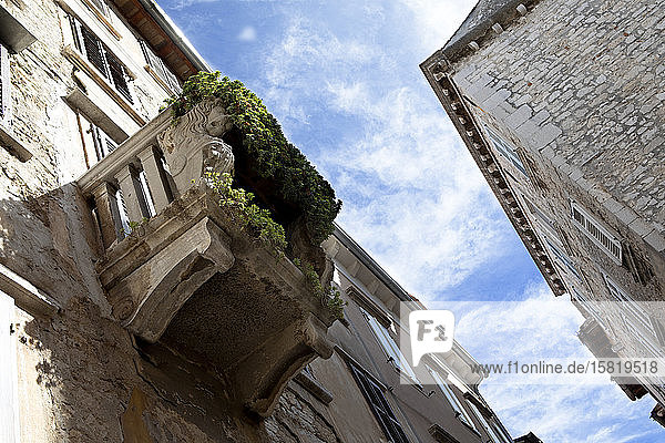 Croatia  Istria  Rovinj  Old buildings in the city  overgrown balcony  view from below