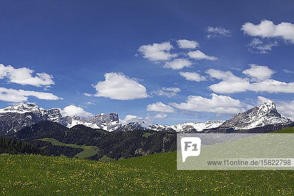Panoramic mountain view in Val Badia  Alto Adige  Italy