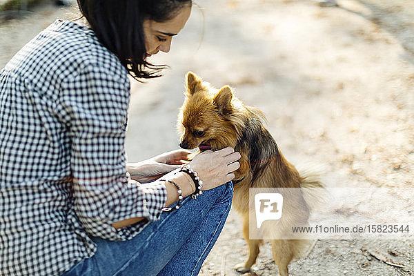 Junge Frau spielt mit Hund im Freien Junge Frau spielt mit Hund im Freien