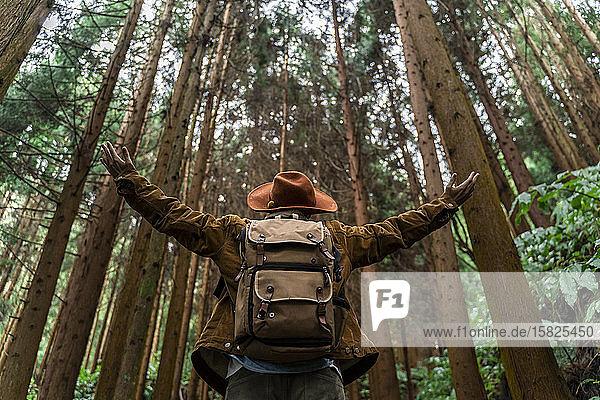 Mann steht im Wald  umgeben von Bäumen  Insel Sao Miguel  Azoren  Portugal